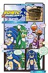 Sonic Riding Dirty- Furry