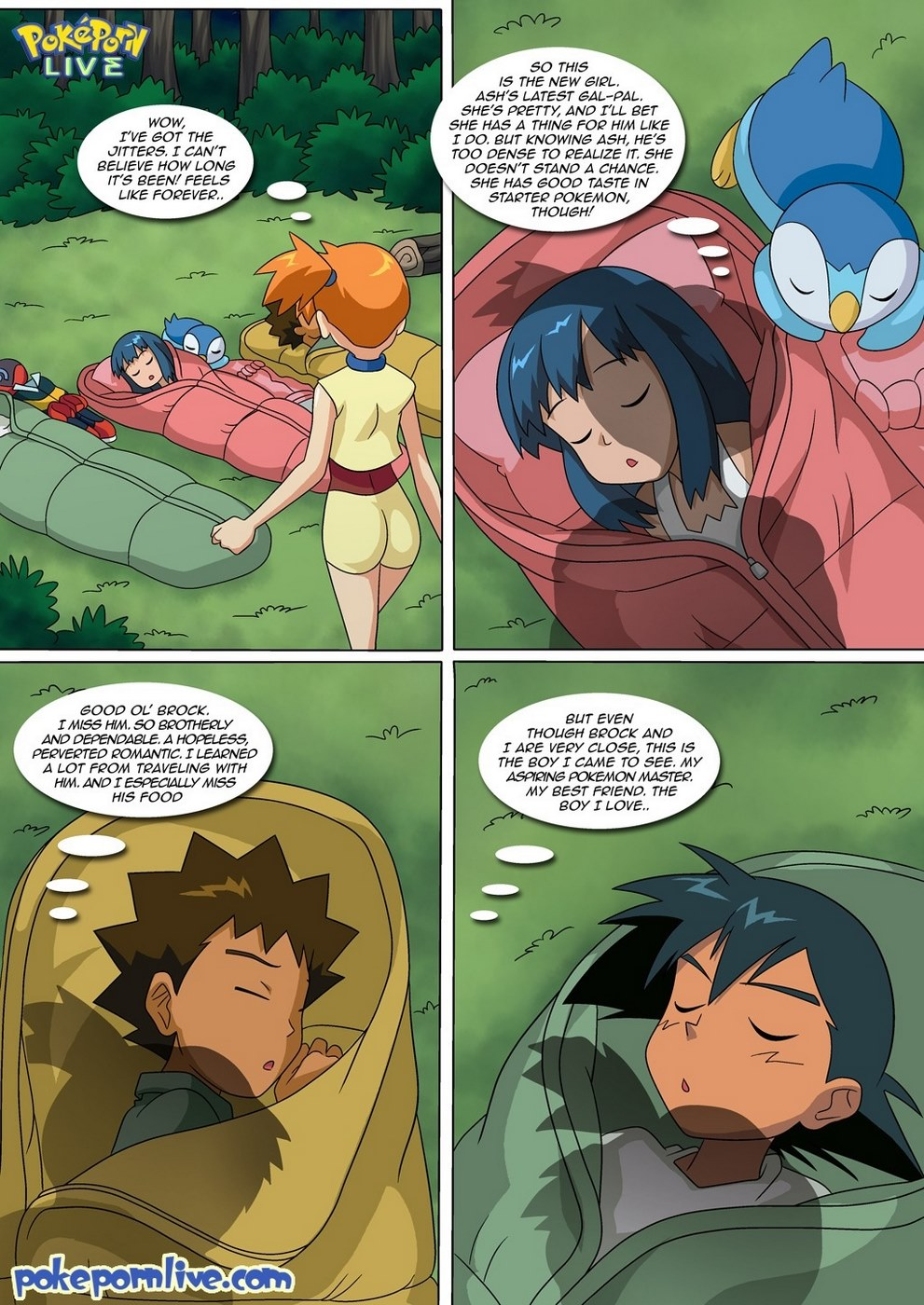 Wet Dreams (Pokemon)- Palcomix